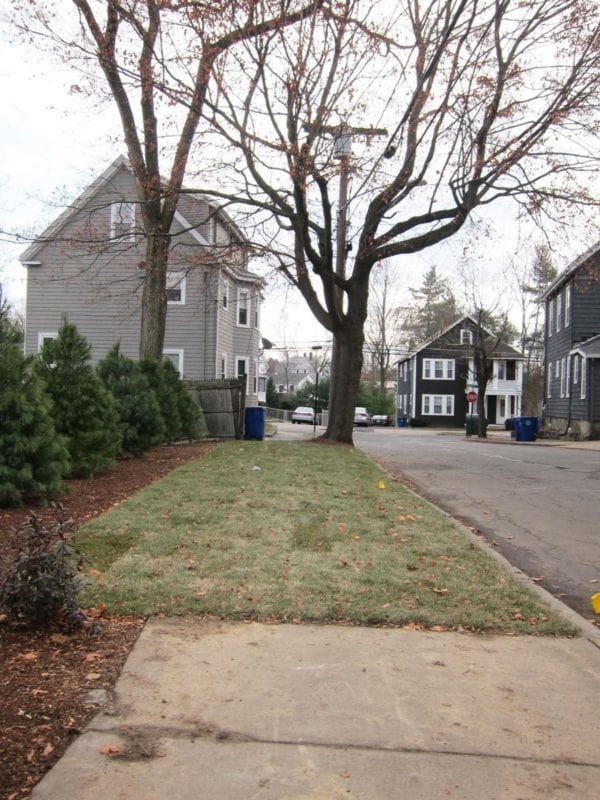 Grass sidewalks: another public way that's looking a little less public