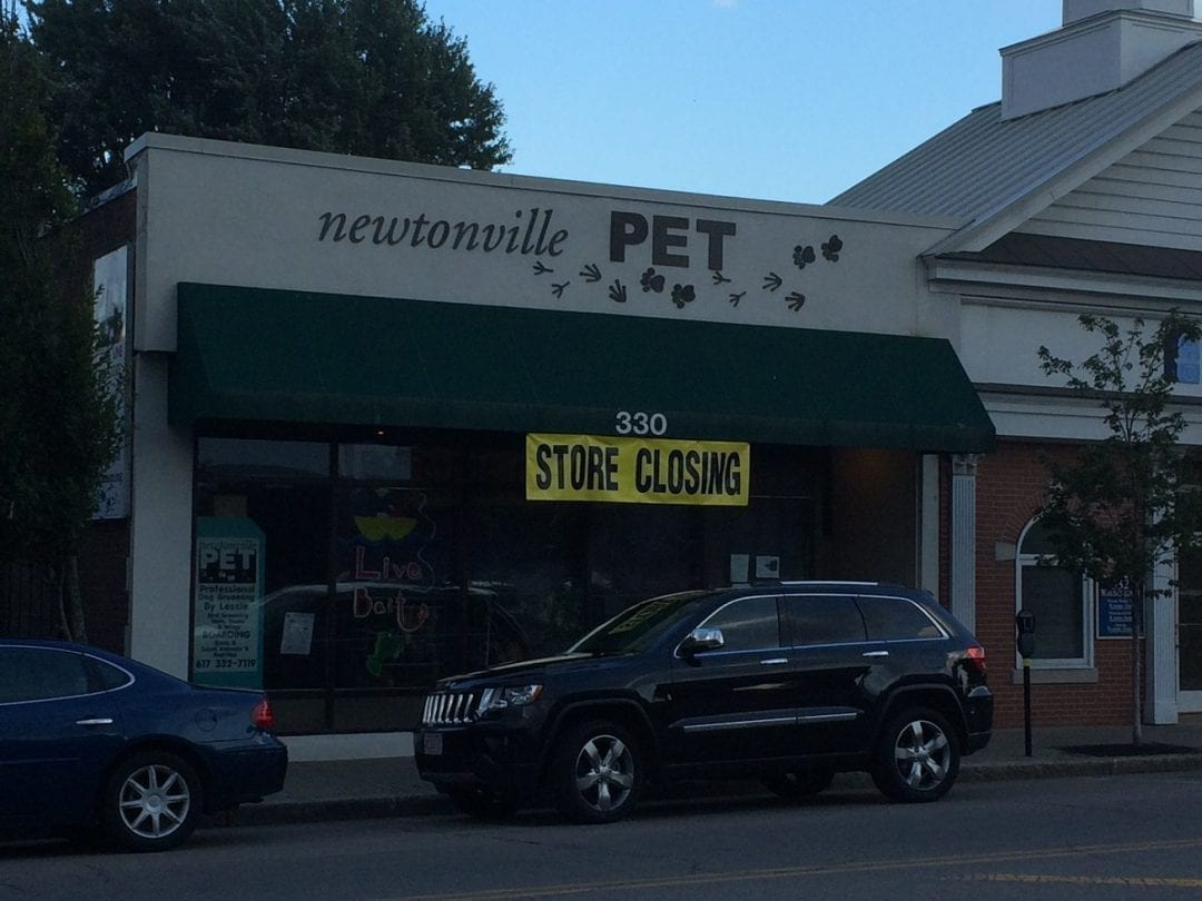 Closings and Openings in Newton