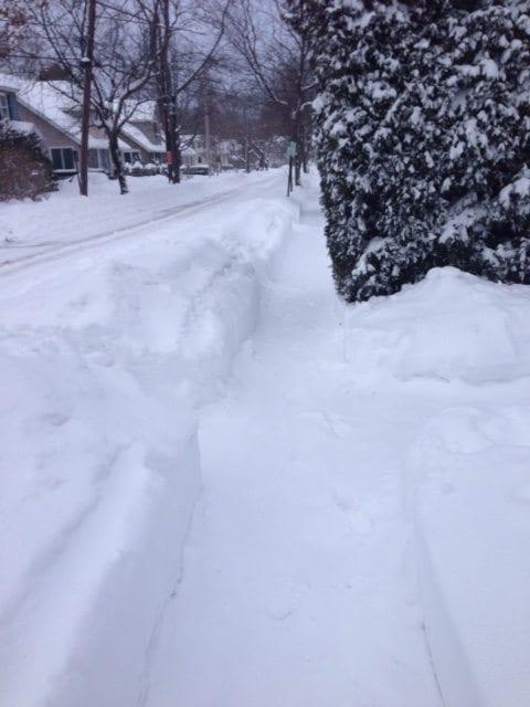 Newton + Snow = Neighborly