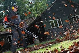 Chamber of Commerce on leafblowers: Let them blow