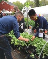 Get your Garden City garden in gear this weekend!