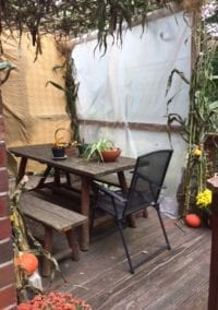 A Sukkah for the era of the Pandemic